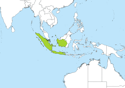 Pancanagara, Indonesia Time Zone Geo Map